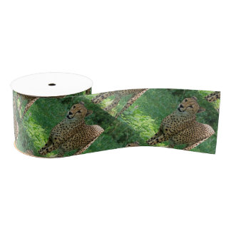 Awesome cheetah grosgrain ribbon