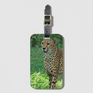 Awesome cheetah luggage tag