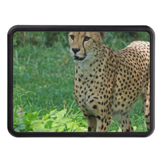 Awesome cheetah trailer hitch cover
