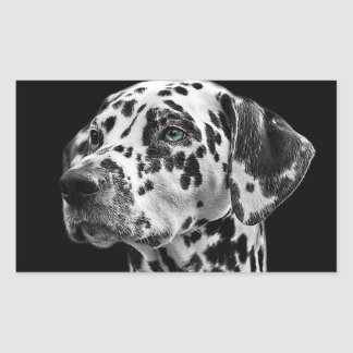Awesome Dalmatian Dog Face Sticker