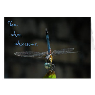 Awesome Dragonfly Thank You Friend Note Card