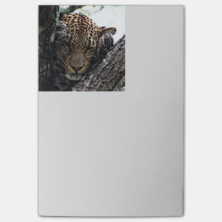 Awesome Leopard Post-it® Notes