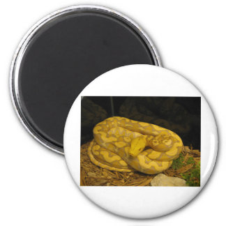 Awesome One of a Kind items! 2 Inch Round Magnet