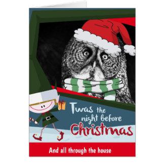 Awesome Owl Christmas greeting card