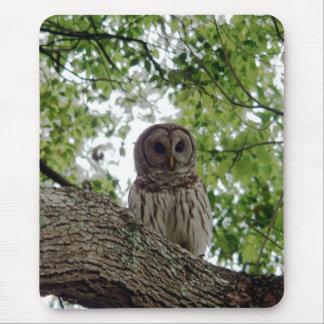 Awesome Owl Mousepad