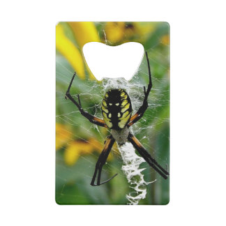 Awesome Photo Orb Spider in Web Wallet Bottle Opener