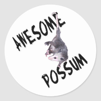 Awesome Possum Opossum Classic Round Sticker