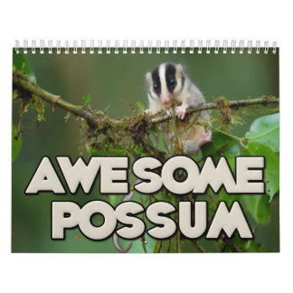 Awesome Possum Wall Calendar