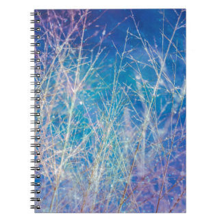 Awesome Sky Nature Image Note Books