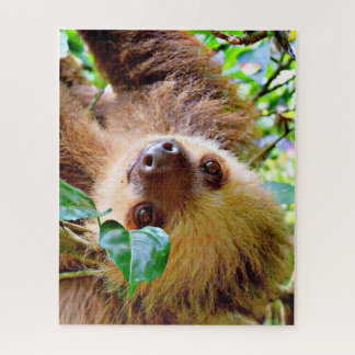 awesome Sloth Jigsaw Puzzle