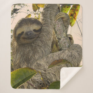 awesome Sloth Sherpa Blanket