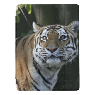 Awesome tiger iPad pro cover