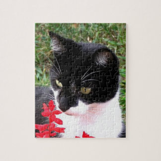 Awesome Tuxedo Cat in Garden Jigsaw Puzzle