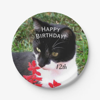 Awesome Tuxedo Cat in Garden Personal Paper Plate
