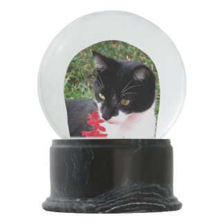 Awesome Tuxedo Cat in Garden Personal Snow Globe