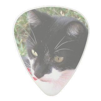 Awesome Tuxedo Cat in Garden Polycarbonate Guitar Pick