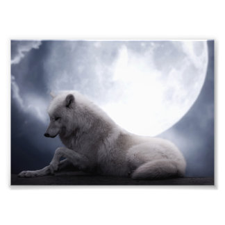 Awesome Wolf and Moon White Wolf Art Photo