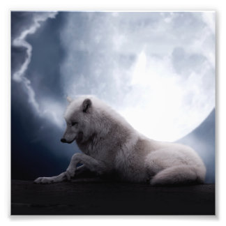 Awesome Wolf and Moon White Wolf Photograph