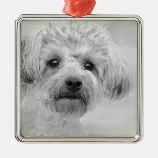 Awesome  Yorkie Poo in Sepia Tones Metal Ornament
