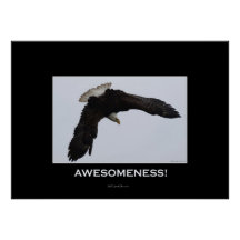 Awesomeness Motivational Poster on Awesomeness Motivational Eagle Poster