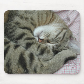 Awkward Cat Sleeping Position Mouse Pad