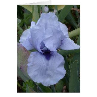 Awsome Blue Iris Card