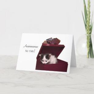 Awww Crazy Cat Lady Cute Birthday Card