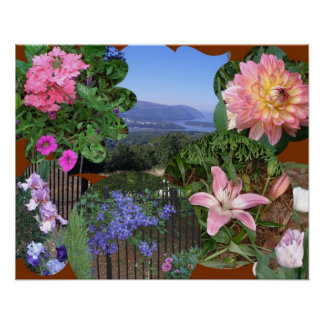 AX- Nature Lovers Collage Poster