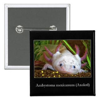 Axolotl Pinback Buttons