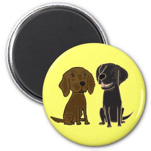 AZ- aimant de chiens d'arrêt de Flatcoated