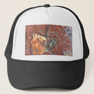 AZ Petrified Wood Trucker Hat