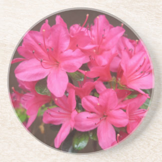 Azalea Dark Pink Close Drink Coasters