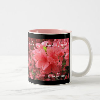 Azalea Field: Friendship - Mug #2
