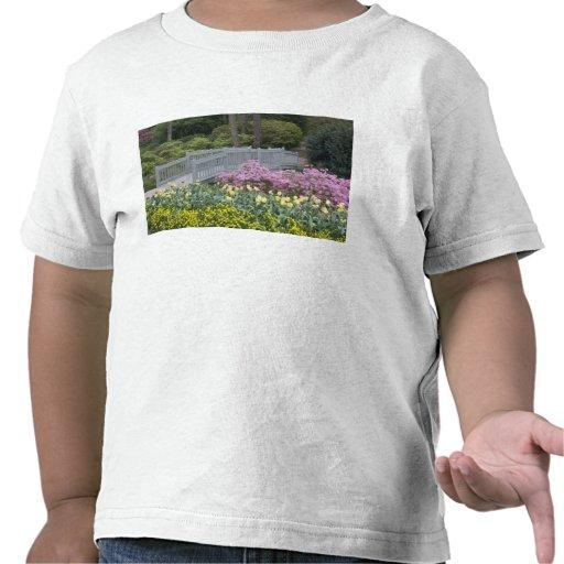 Azalea Heath Family (Ericaceae), Tulip, and Tshirt