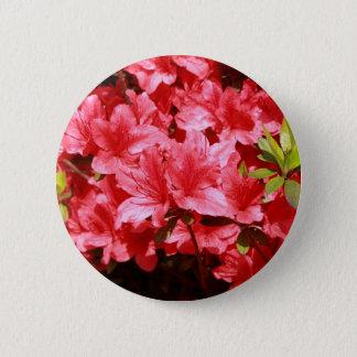 azalea red flowers 2 inch round button