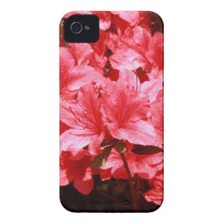 azalea red flowers Case-Mate iPhone 4 cases