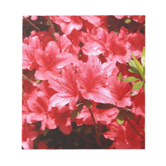 azalea red flowers notepad