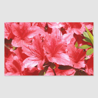 azalea red flowers sticker