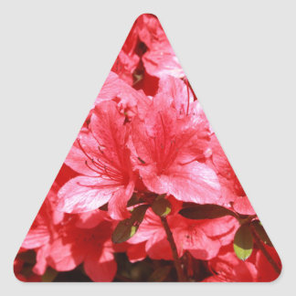 azalea red flowers triangle sticker