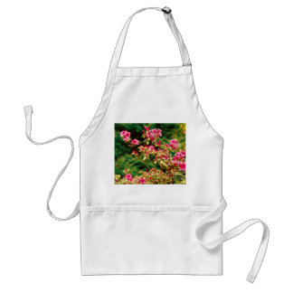 Azaleas blooming standard apron