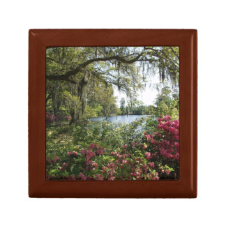 Azaleas Time Wood Box