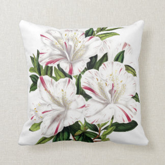 Azaleas vintage illustration throw pillow