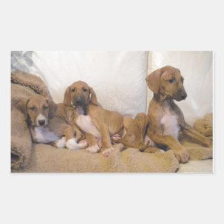 Azawakh Puppies Sticker