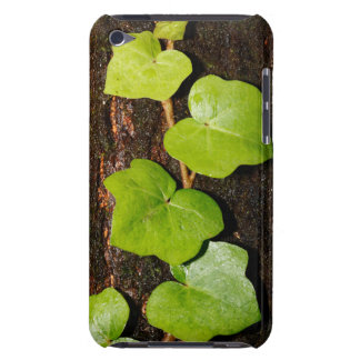 Azores endemic hedera barely there iPod cover