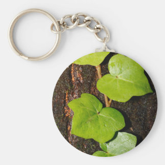Azores endemic hedera basic round button keychain