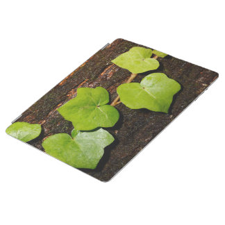 Azores endemic hedera iPad cover