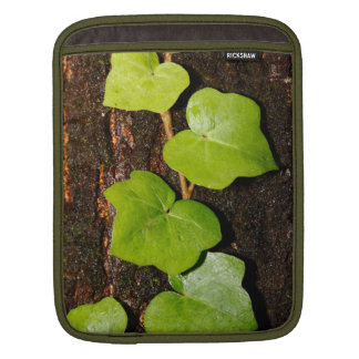 Azores endemic hedera iPad sleeve