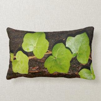 Azores endemic hedera lumbar pillow