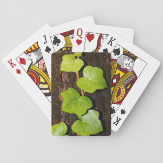 Azores endemic hedera playing cards