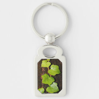 Azores endemic hedera Silver-Colored rectangle keychain